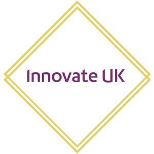 Sara El-Hanfy, Innovation Technologist, InnovateUK